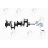 Crankshaft Assembly C/W Bearings