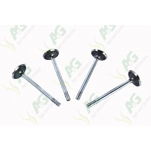 Exhaust Valve - Set -