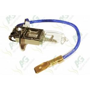 Bulb 12V 100W