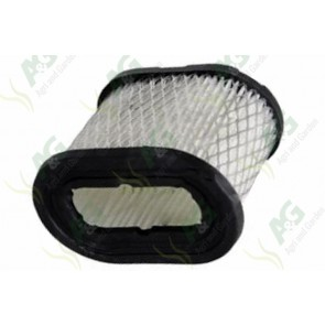 Air Filter Briggs And Stratton - 498596